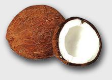 Matual Coconut