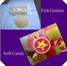 edible fish gelatin