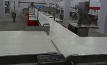 Cutting And Deboning Line