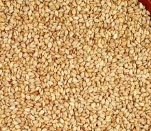 Yellow/White Sesame Seeds
