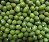 HIGH QUALITY ORGANIC GREEN MUNG BEANS