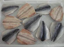 Frozen Mackerel Flaps