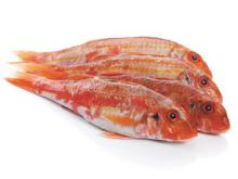 Red mullet whole round gutted(duyen.gmf)