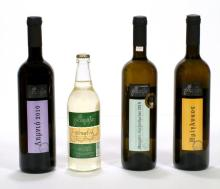 Organic Wines from Greece