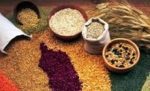 Calrose Rice