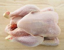Chicken Wing , Chicken Leg , Chicken Breast and Whole Chicken for sale