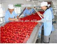 High Efficiency Tomato paste Ketchup Production Line