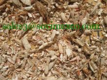 Shrimp shell with competitive price