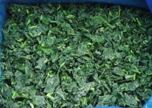 Frozen Spinach and IQF Spinach