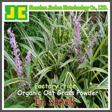 Green Organic Oat Grass Powder