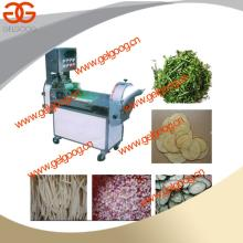 Multifunction inverter Controlled  Vegetable  Cutter GG-109
