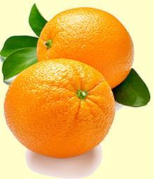 Citrus Aurantium Extract(Hesperidin, Diosmin)