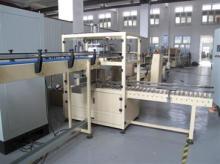 Automatic  Carton Packing Machine /  Automatic  Carton  Packer