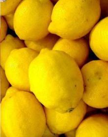 South Africa Lemon