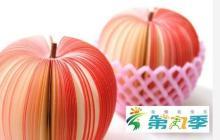 Mango Foam Protection Sleeve Net