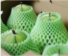 China Made Cheap Fruit Foam Sleeve Packaging Net