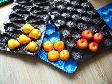 China Made Food Grade Plastic Food Tray
