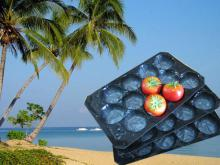 Made in China/SGS Soft Alveolar PP Trays For Fruit