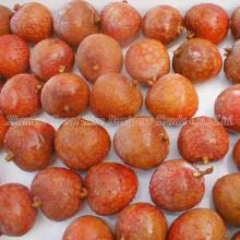 Frozen Fruit, Cheapest Frozen Lychee, IQF Lychee, USD1700 per Ton