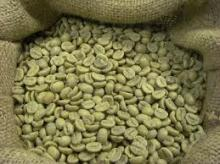 Arabica and Robusta Coffee Green Beans