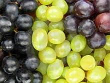 Quality fresh grapes