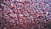 IQF mixed kidney beans (red/white/green)