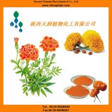Lutein CWS/Lutein Ester/Marigold Extract