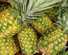 FRESH SOUTH AFRICA PINEAPPLE