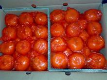 Sweet mandarin orange for hot sale