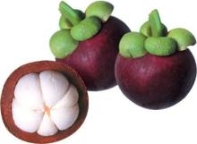 Mangosteen Extracts