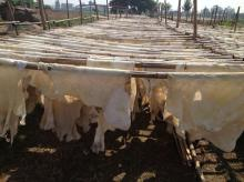 dry cow hide splits for rambak crackers