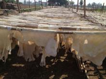 dry cow hide splits for rambak crackers