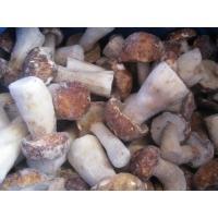 Frozen  Mushroom   Boletus  Edulis