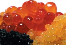 Beluga Caviar,Russian Caviar