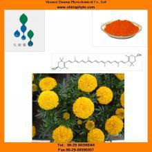 Zeaxanthin-5%-40%HPLC/UV-Manufacturer