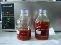 refined crude palm oil