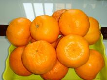 Buy seasoning Chinese honey mandarins orange