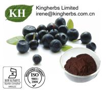 Acai Berry Extract; 60 %, 40%,  1 %- 1 5% Anthocyanidins,  1 0% Flavones, 4:  1 ;  1 0:  1