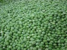 Fresh Green Peas and Frozen Green Peas