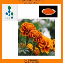 5%-90% HPLC / UV -Lutein