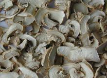 dehydrated sliced mushroom for sale