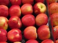 Fresh Grade A Fuji Apples