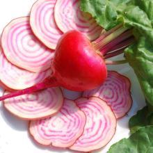 beet   red  pigment,  red   beet  pigment,  red   beet   color ,  beet root  red  pigment,  beet root  color