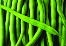 Frozen String Beans