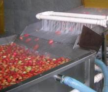 Tomato high-pressure spray cleaning machine