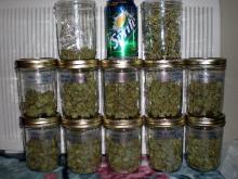High Quality Herbal Drugs