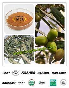 100% Natural Olive Leaf Extract 10%-50% Oleuropein & Hydroxytyrosol