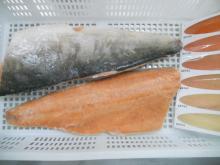 Pink/Chum Salmon