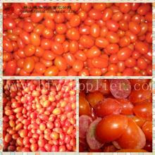 wholesale Frozen Cherry Tomato