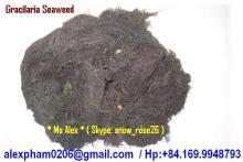 DRIED SEAWEED for Agar, Fertilizer, animal feed, Food